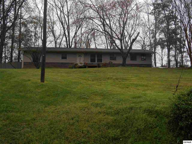 1035 Mark Ann Ln, Sevierville, TN 37862 (#227657) :: Colonial Real Estate