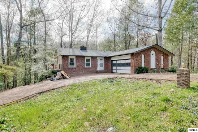 532 Bruce Road, Gatlinburg, TN 37738 (#227662) :: Four Seasons Realty, Inc