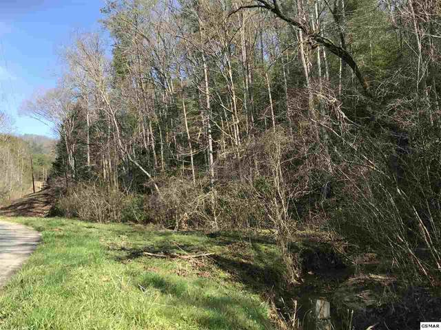 Lot 1 Obes Branch Road, Sevierville, TN 37876 (#227674) :: Four Seasons Realty, Inc