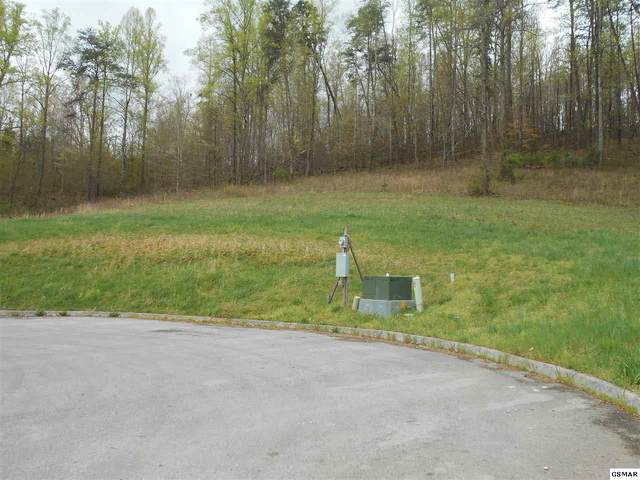 Lot 7 Briar Ridge Ln, Strawberry Plains, TN 37871 (#227675) :: Four Seasons Realty, Inc