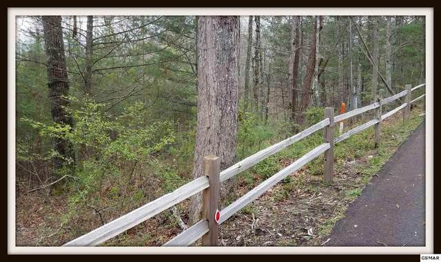 Lot 2 Lot 2 Sawmill Branch Dr, Sevierville, TN  (#227692) :: Prime Mountain Properties