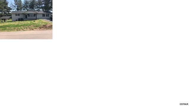 5561 Buell St, Talbott, TN 37877 (#227696) :: Four Seasons Realty, Inc