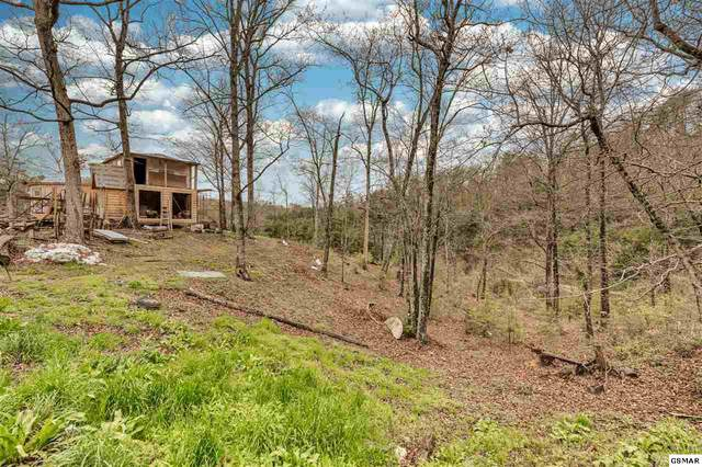 2208 Little Valley Rd, Sevierville, TN 37862 (#227700) :: Prime Mountain Properties