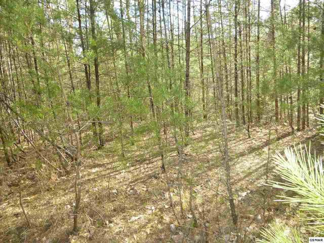 Tr-5 Mossy Cove Way, Sevierville, TN 37876 (#227708) :: Prime Mountain Properties