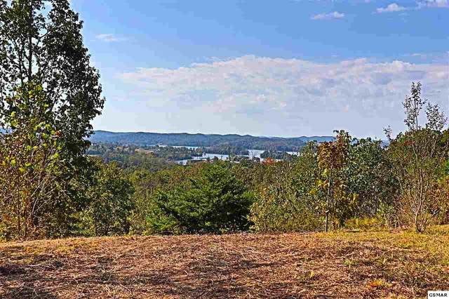 Lot 364 W Mountain Dr, Rockwood, TN 37854 (#227724) :: The Terrell Team