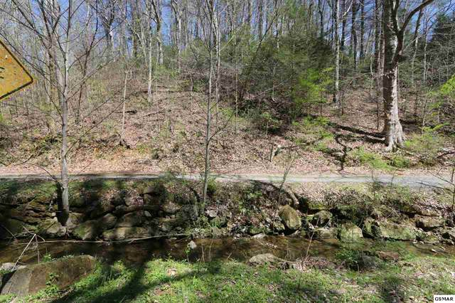 LOT 5 Cabin Creek Way, Sevierville, TN 37862 (#227725) :: Colonial Real Estate