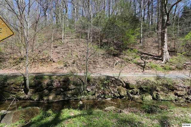 LOT 5 Cabin Creek Way, Sevierville, TN 37862 (#227725) :: The Terrell Team