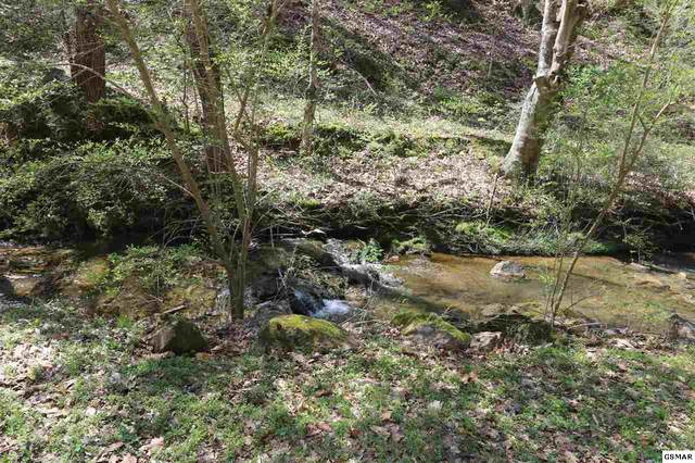 LOT 6 Cabin Creek Way, Sevierville, TN 37862 (#227728) :: Colonial Real Estate