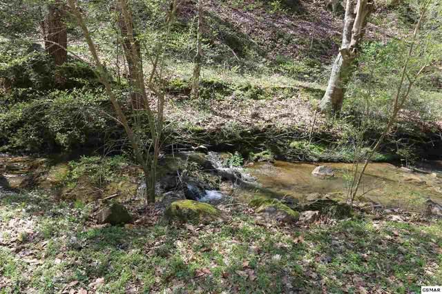 LOT 6 Cabin Creek Way, Sevierville, TN 37862 (#227728) :: The Terrell Team