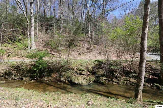 LOT 7 Cabin Creek Way, Sevierville, TN 37862 (#227729) :: The Terrell Team