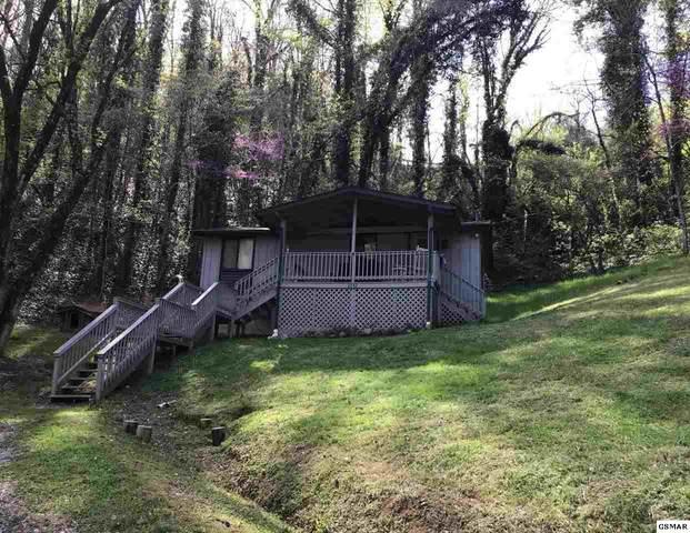 2242 Ferguson Lane, Sevierville, TN 37876 (#227732) :: Colonial Real Estate
