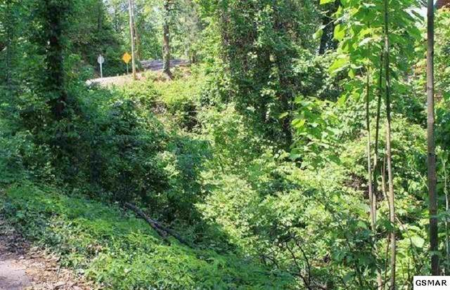 Lot 4 Stans Road, Gatlinburg, TN 37738 (#227736) :: Colonial Real Estate