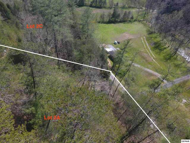 N Ball Hollow Parcel 076 012., Sevierville, TN 37876 (#227747) :: Four Seasons Realty, Inc