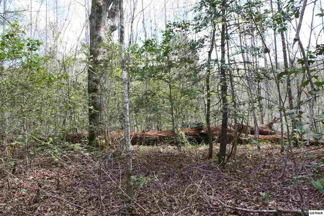 N Ball Holow Parcel 076 012., Sevierville, TN 37876 (#227749) :: Four Seasons Realty, Inc