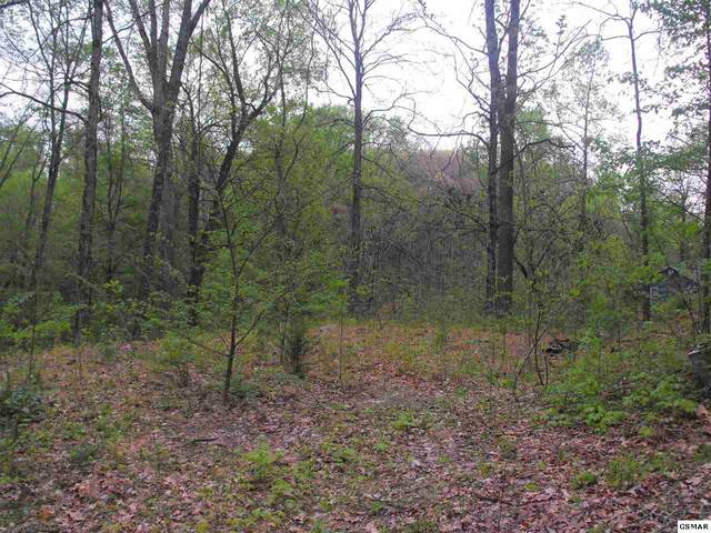 Lot Lot 30 31 Highpoint Ln, Sevierville, TN 37876 (#227765) :: Jason White Team | Century 21 Legacy