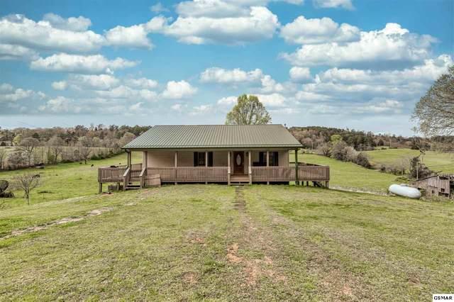 340 Grassy Valley Rd, Whitesburg, TN 37891 (#227771) :: Four Seasons Realty, Inc
