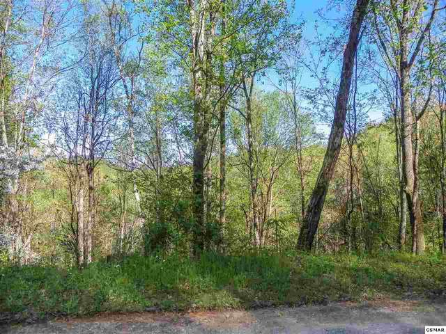 Lot# 33 Sourwood Way, Sevierville, TN 37862 (#227811) :: The Terrell Team