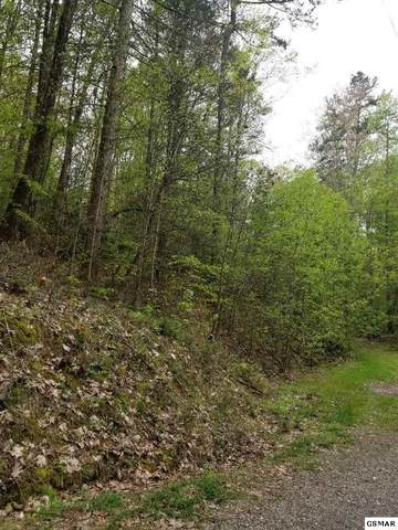 Lot 8 Clayton Way, Sevierville, TN 37876 (#227827) :: Four Seasons Realty, Inc