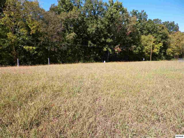 Lot 8 Ch Rankin Rd, Dandridge, TN 37725 (#227849) :: Billy Houston Group
