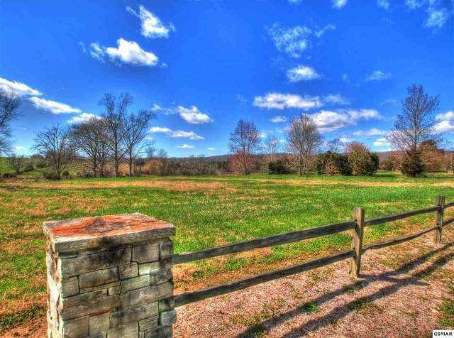 Lot 906 Big Valley Rd, Sharps Chapel, TN 37866 (#227855) :: Prime Mountain Properties
