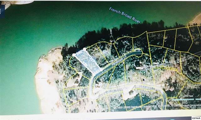 Penelope Ln Lot 11, Sevierville, TN 37876 (#227861) :: The Terrell Team