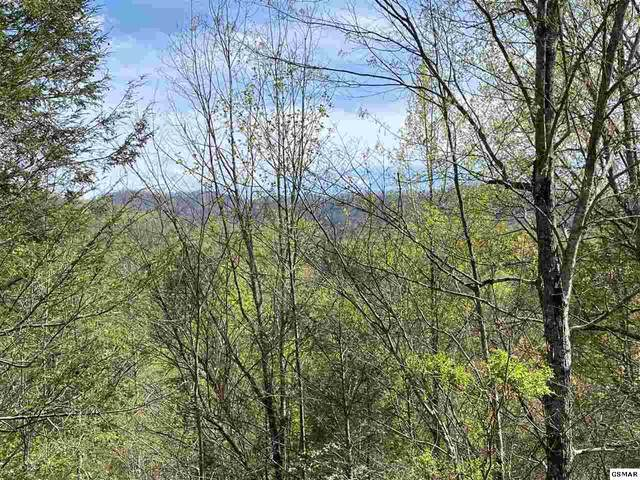 Lot Lot 24 Mountain Rest Way, Sevierville, TN  (#227921) :: Four Seasons Realty, Inc