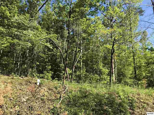 Lot 19 Black Oak Drive, Sevierville, TN 37876 (#227982) :: Jason White Team | Century 21 Legacy