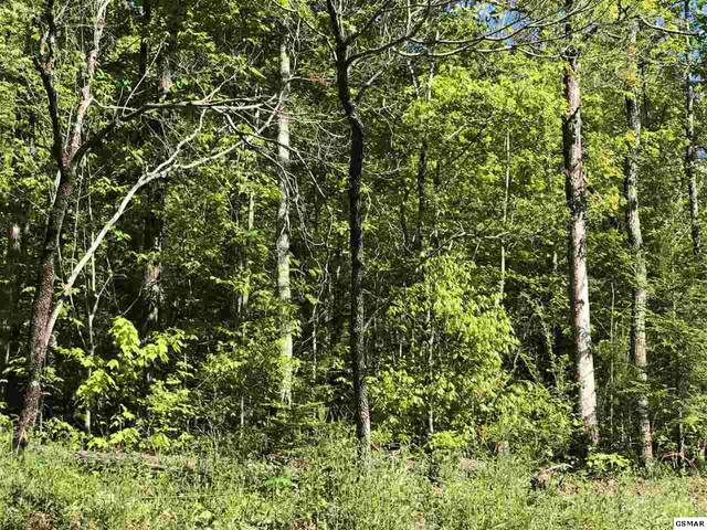 Lot 59 Alpine Drive, Sevierville, TN 37876 (#227983) :: The Terrell Team