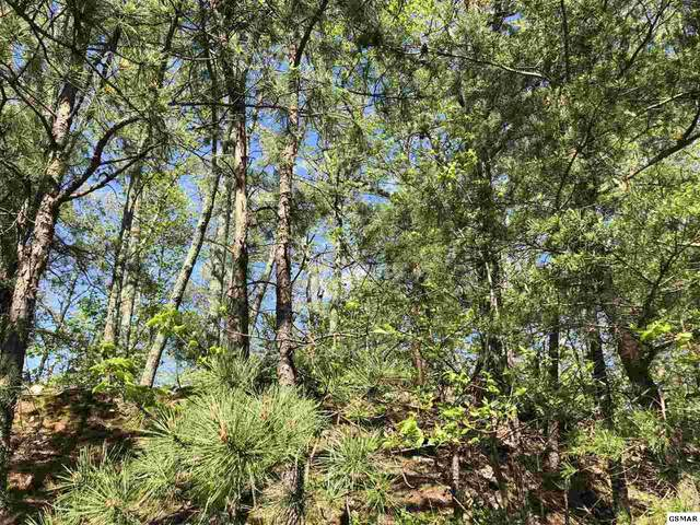 Lot 12 Maple Lane, Sevierville, TN 37876 (#227986) :: Four Seasons Realty, Inc