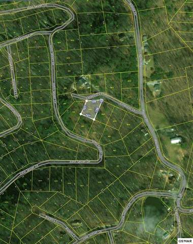 Lot 20 Linwood Court, Sevierville, TN 37876 (#227991) :: Jason White Team | Century 21 Legacy