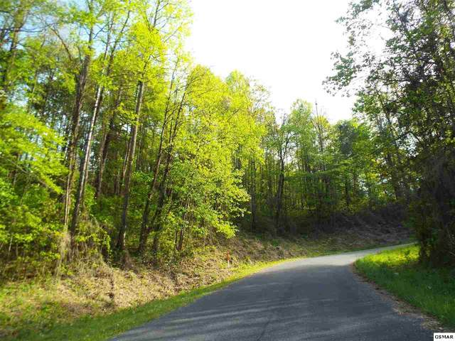 Lot 4 Schisandra Lane, Cosby, TN 37722 (#227999) :: Jason White Team | Century 21 Legacy
