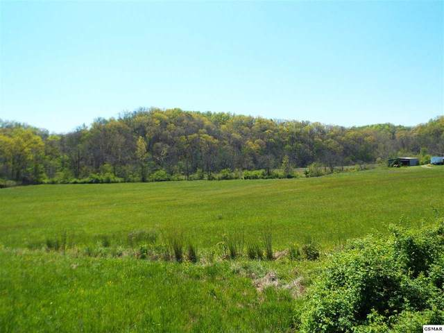 Tracts 2 & 3 Fowlers Grove Rd, Newport, TN 37821 (#228001) :: Four Seasons Realty, Inc