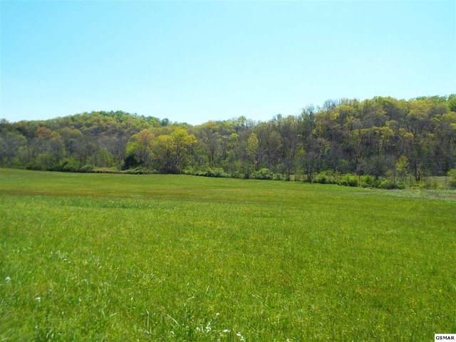 Tract 2 Fowlers Grove Rd, Newport, TN 37821 (#228002) :: Four Seasons Realty, Inc