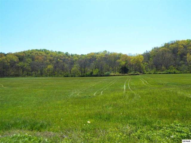 Tract 3 Fowlers Grove Rd, Newport, TN 37821 (#228006) :: Four Seasons Realty, Inc