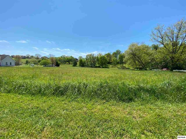 lot 16 Broad River Lane, Sevierville, TN 37876 (#228019) :: Four Seasons Realty, Inc