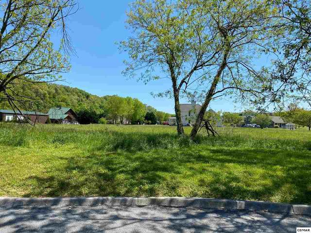 lot #17 Broad River Lane, Sevierville, TN 37876 (#228020) :: Four Seasons Realty, Inc