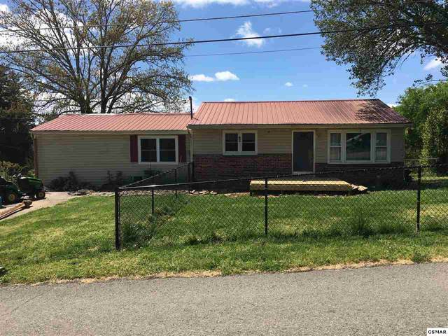 9010 Curtis Rd, Strawberry Plaine, TN 37871 (#228022) :: Colonial Real Estate