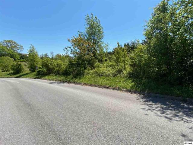 lot 38 Broad River Lane, Sevierville, TN 37876 (#228023) :: Colonial Real Estate
