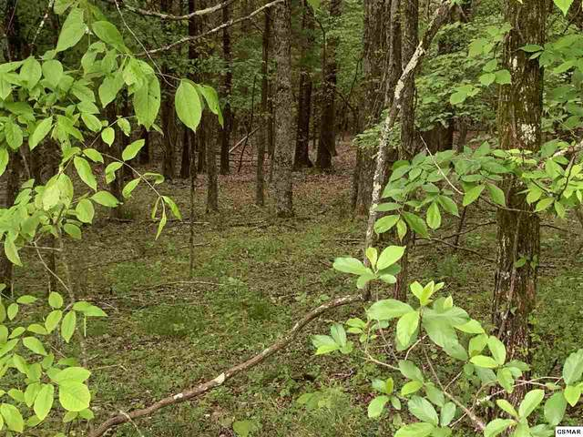 Lot 1058 Mountain View Lane, Baneberry, TN 37890 (#228031) :: Colonial Real Estate