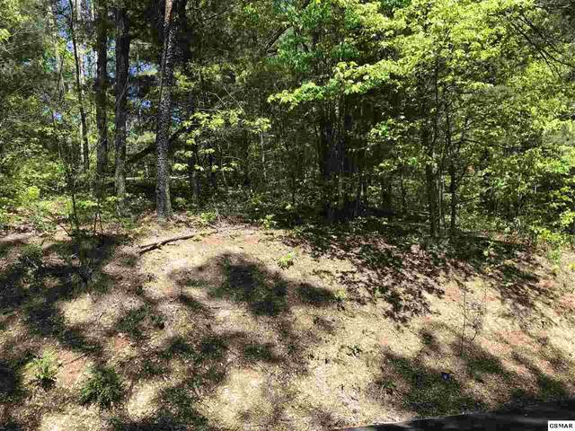Lot 15 Stepping Stone, Sevierville, TN 37862 (#228051) :: Four Seasons Realty, Inc