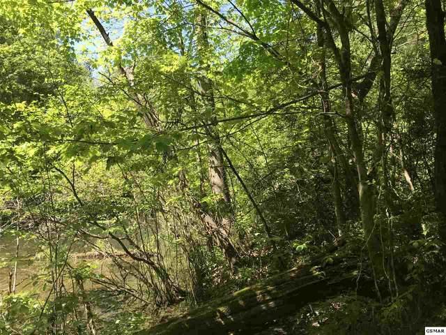 Lot 7-A Black Walnut Flatsrd, Sevierville, TN 37862 (#228053) :: The Terrell Team