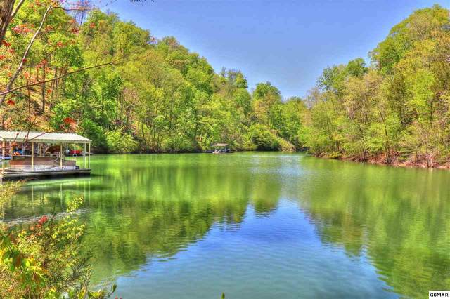 Lot 18 Emerald Cove Way, Maynardville, TN 37807 (#228067) :: The Terrell Team