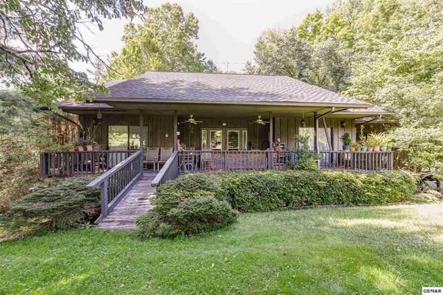 139 Martha Mccarter Road, Gatlinburg, TN 37738 (#228077) :: Four Seasons Realty, Inc