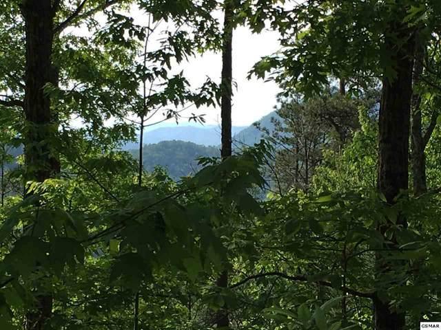 Lot 30 Ridgeback Lane, Sevierville, TN 37862 (#228121) :: Jason White Team | Century 21 Four Seasons
