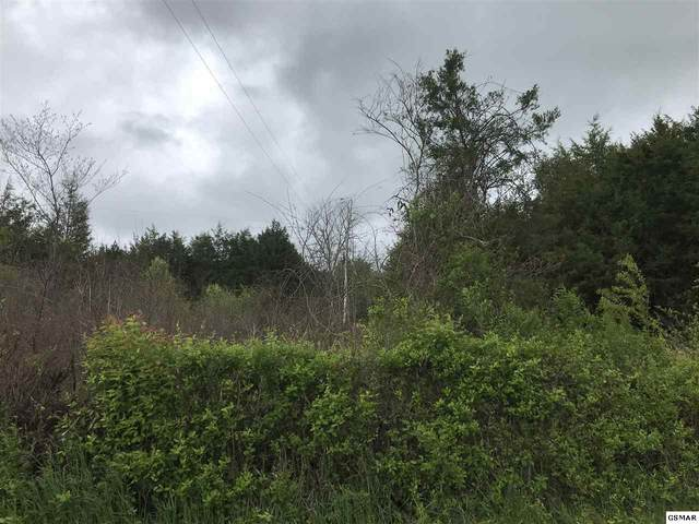 Lot 10 Fred Marshall Road, Russellville, TN 37860 (#228125) :: Suzanne Walls with eXp Realty