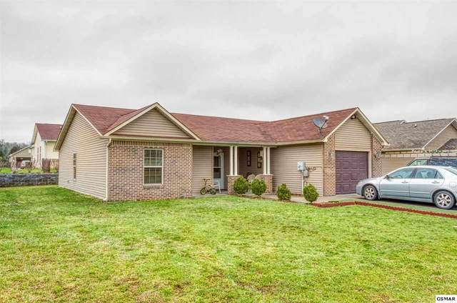 1239 Avery Ln, Sevierville, TN 37862 (#228127) :: Colonial Real Estate