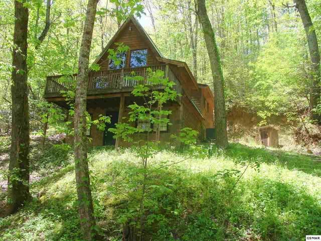 1131 Trailer Park Ln, Sevierville, TN 37876 (#228139) :: Four Seasons Realty, Inc