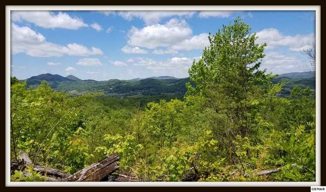 Lot 3 Lexy Lane, Sevierville, TN 37862 (#228166) :: Four Seasons Realty, Inc