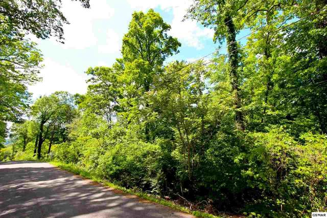 LOT 45 Cliffwood Dr, Newport, TN 37821 (#228172) :: Colonial Real Estate