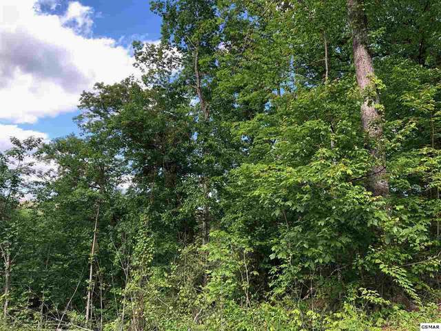 Lot 52 Cloud View Drive, Sevierville, TN 37862 (#228189) :: Four Seasons Realty, Inc